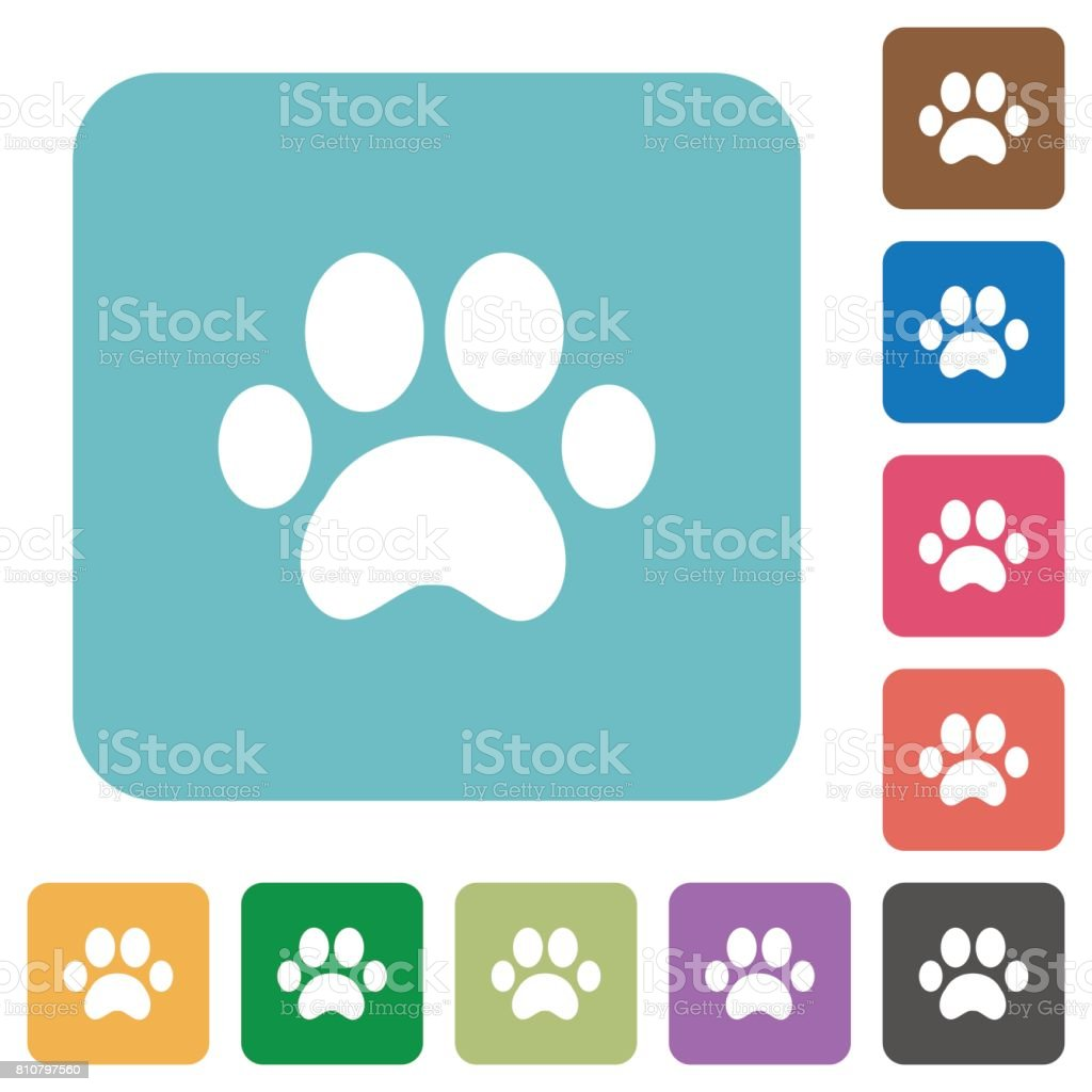 Paw prints rounded square flat icons vector art illustration