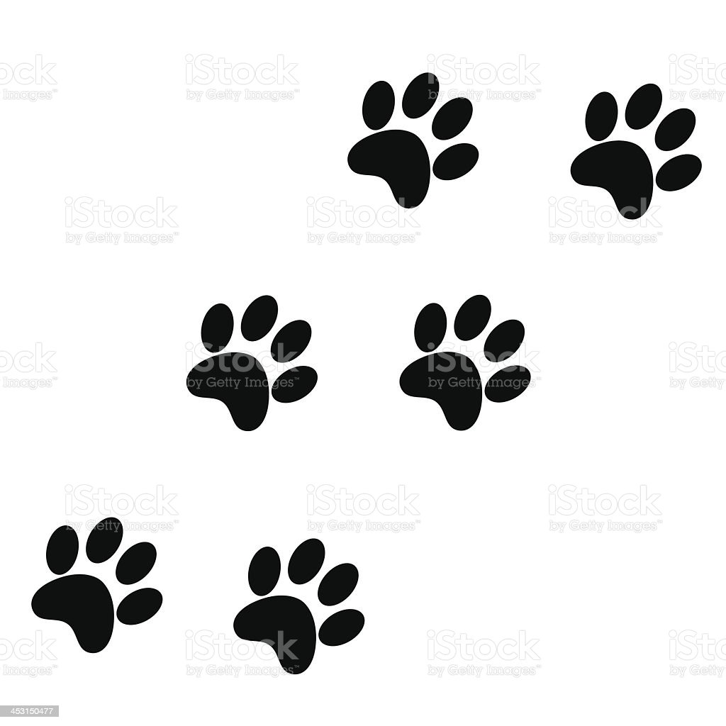 Paw Prints vector art illustration