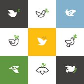 Peace dove with green branch. Flat line vector illustrations set