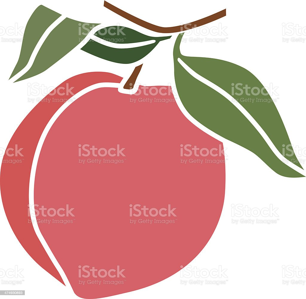 peach in color vector art illustration