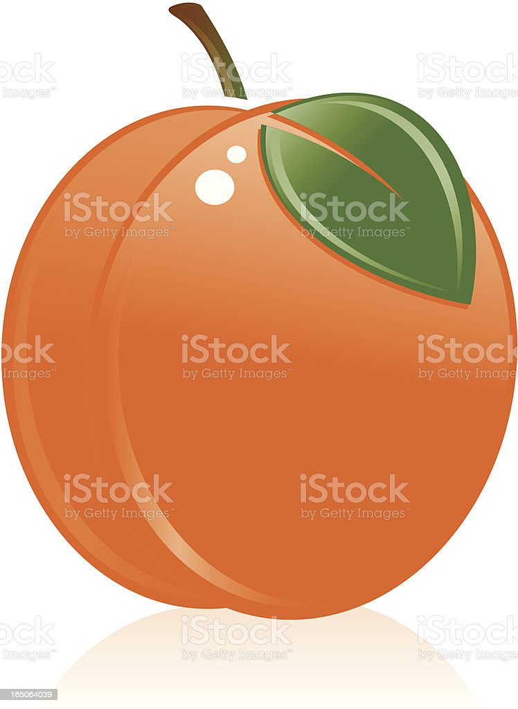 Peach royalty-free stock vector art