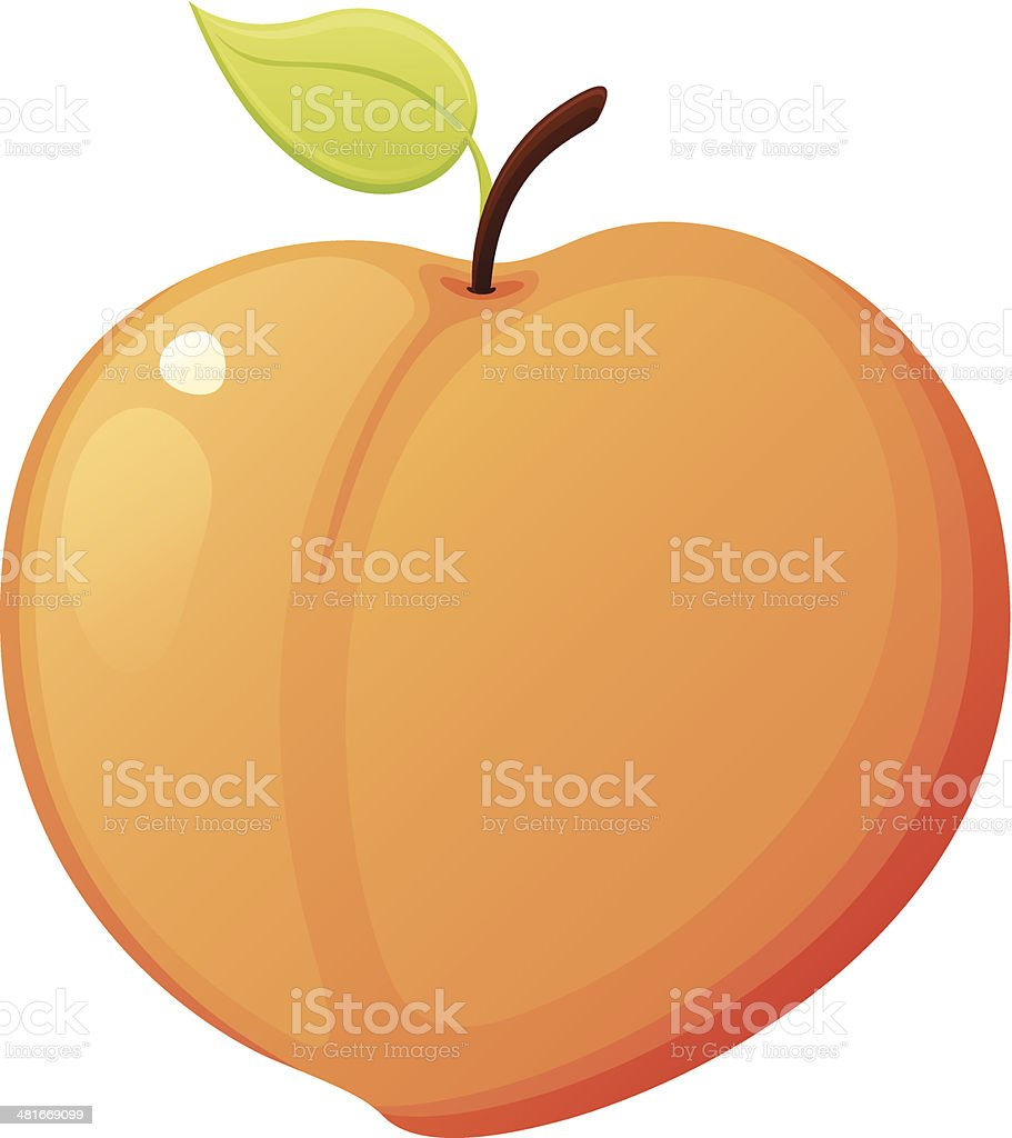 Peach vector art illustration