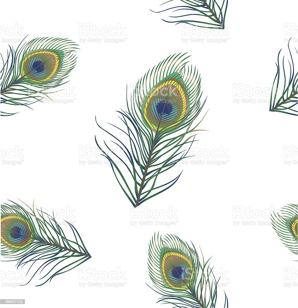 Peacock Background royalty-free stock vector art