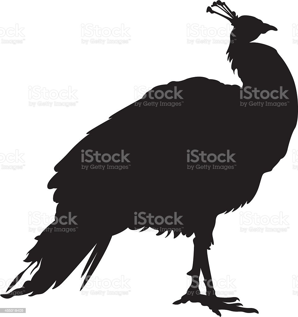 Peacock in Silhouette vector art illustration
