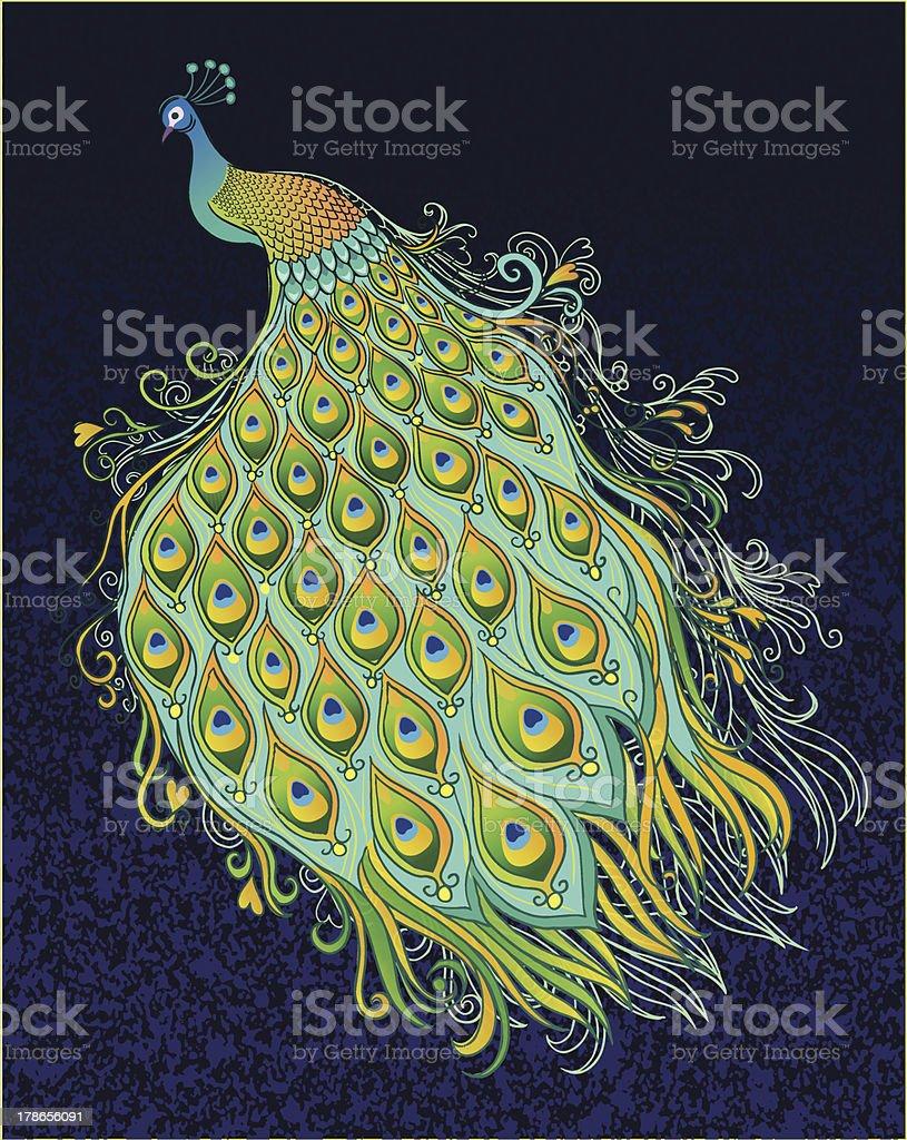 Peacock on Dark Textured Background vector art illustration