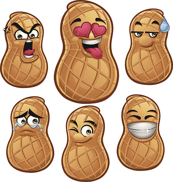 Peanut Food Clip Art, Vector Images & Illustrations - iStock