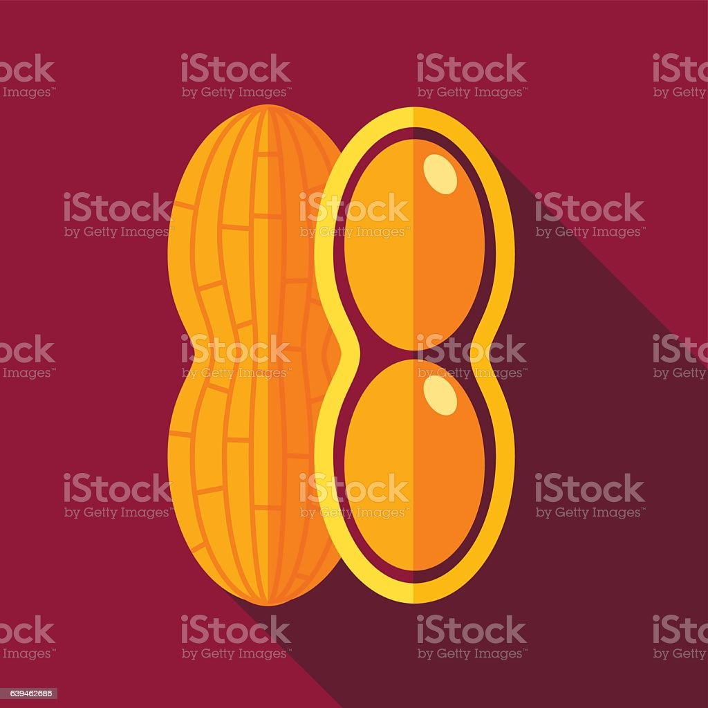 Peanut flat icon. Vegetable vector vector art illustration