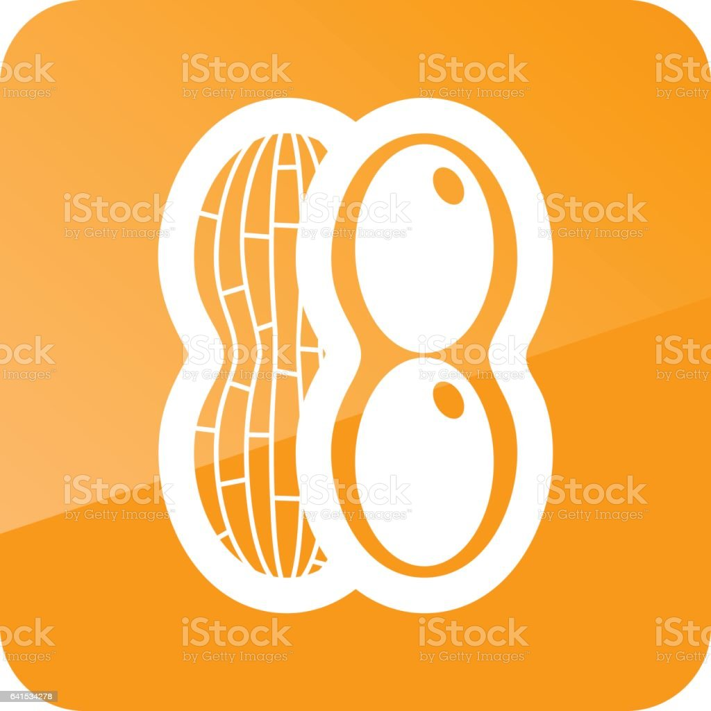 Peanut outline icon. Vegetable vector vector art illustration