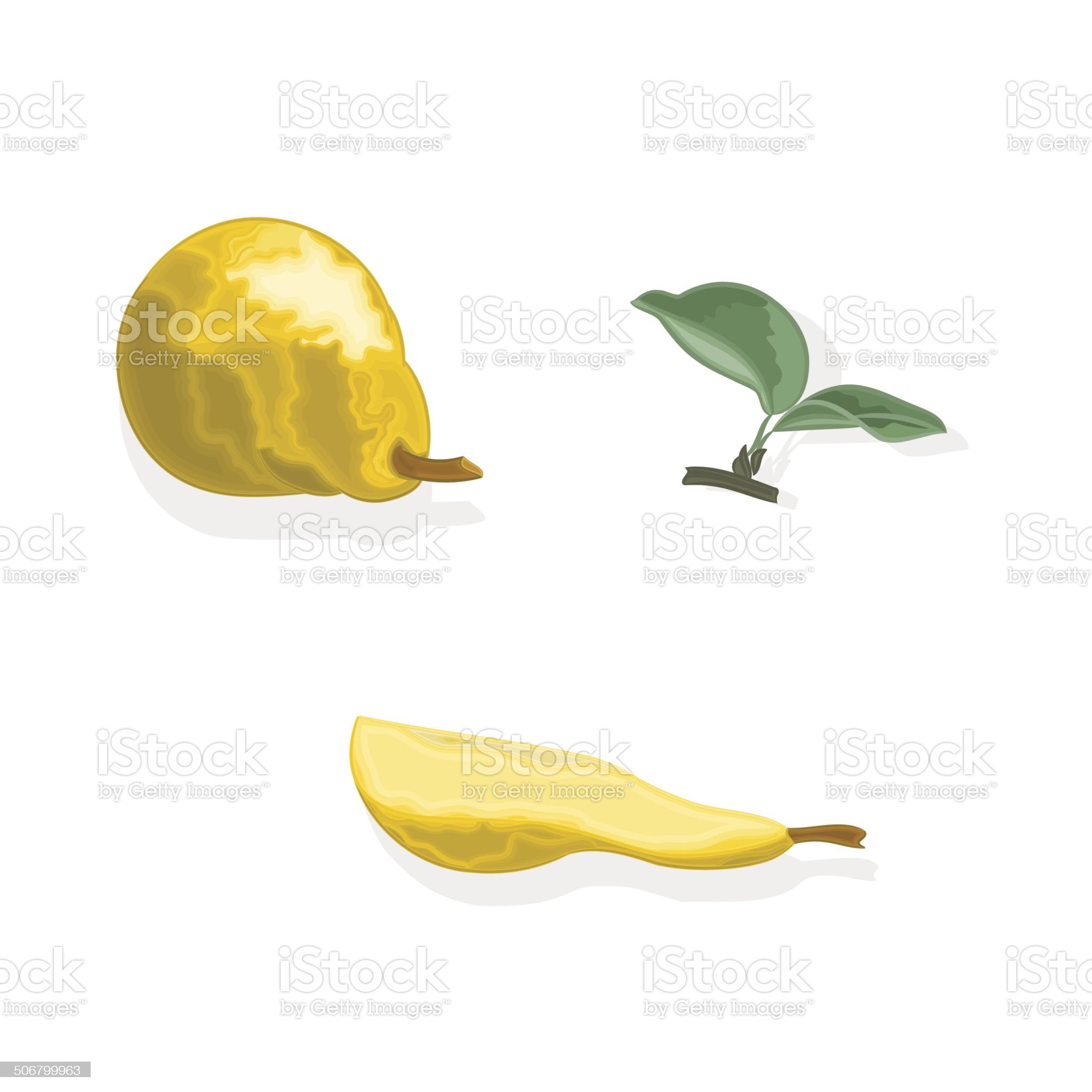 Pear and a querter  of pear with leaves Vector royalty-free stock vector art
