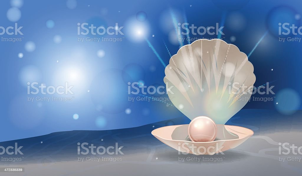 pearl shell royalty-free stock vector art