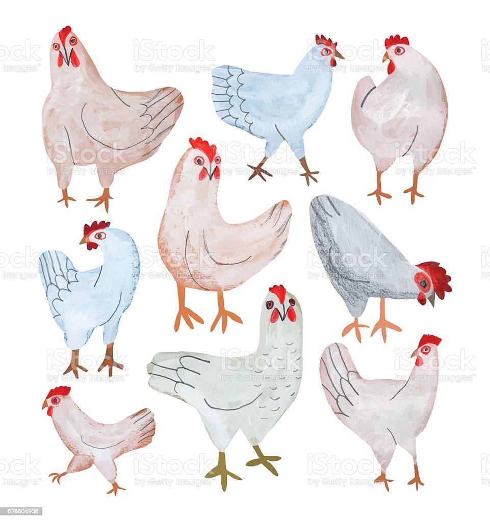 Pencil drawing set of chickens vector art illustration