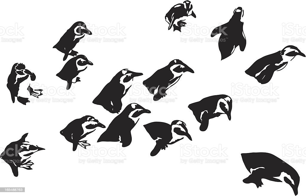 Penguins royalty-free stock vector art