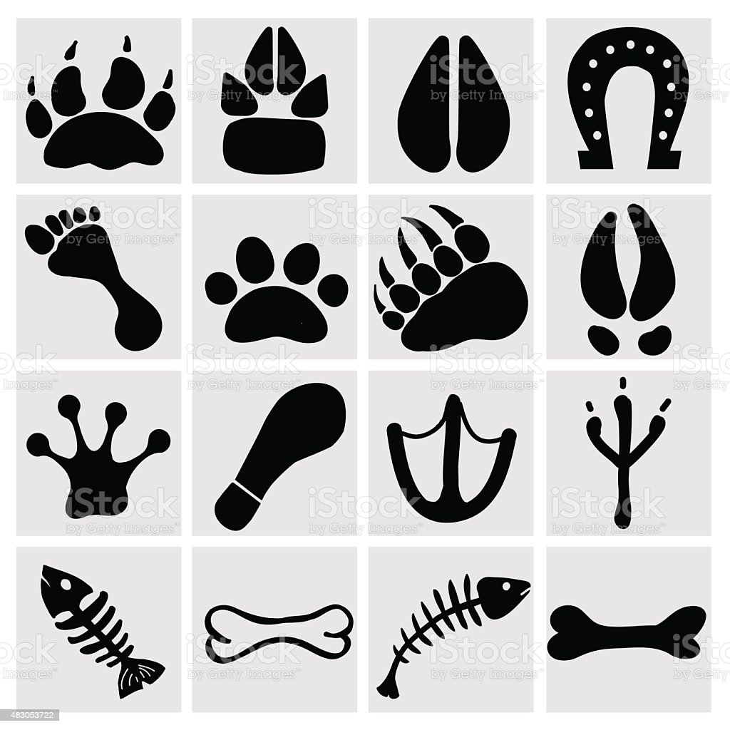 People and pets footsteps vector art illustration