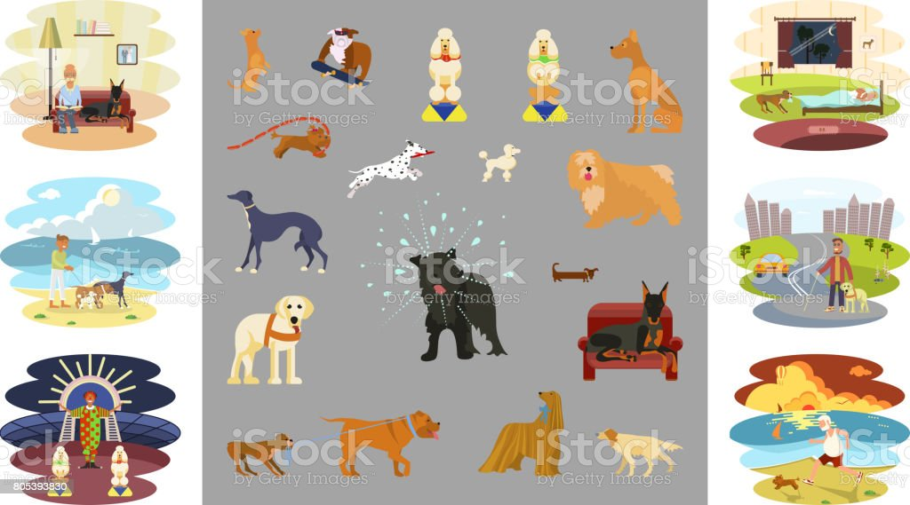 People walking with dogs vector art illustration