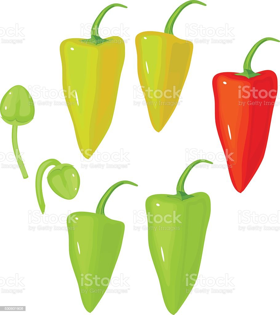 pepper set vector art illustration