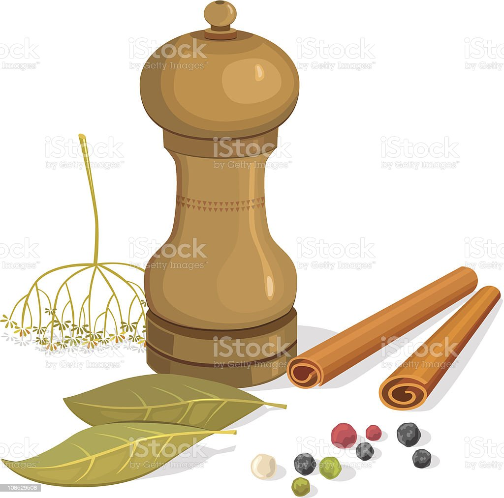 Pepper shakers, bay leaf, dill, cinnamon vector art illustration