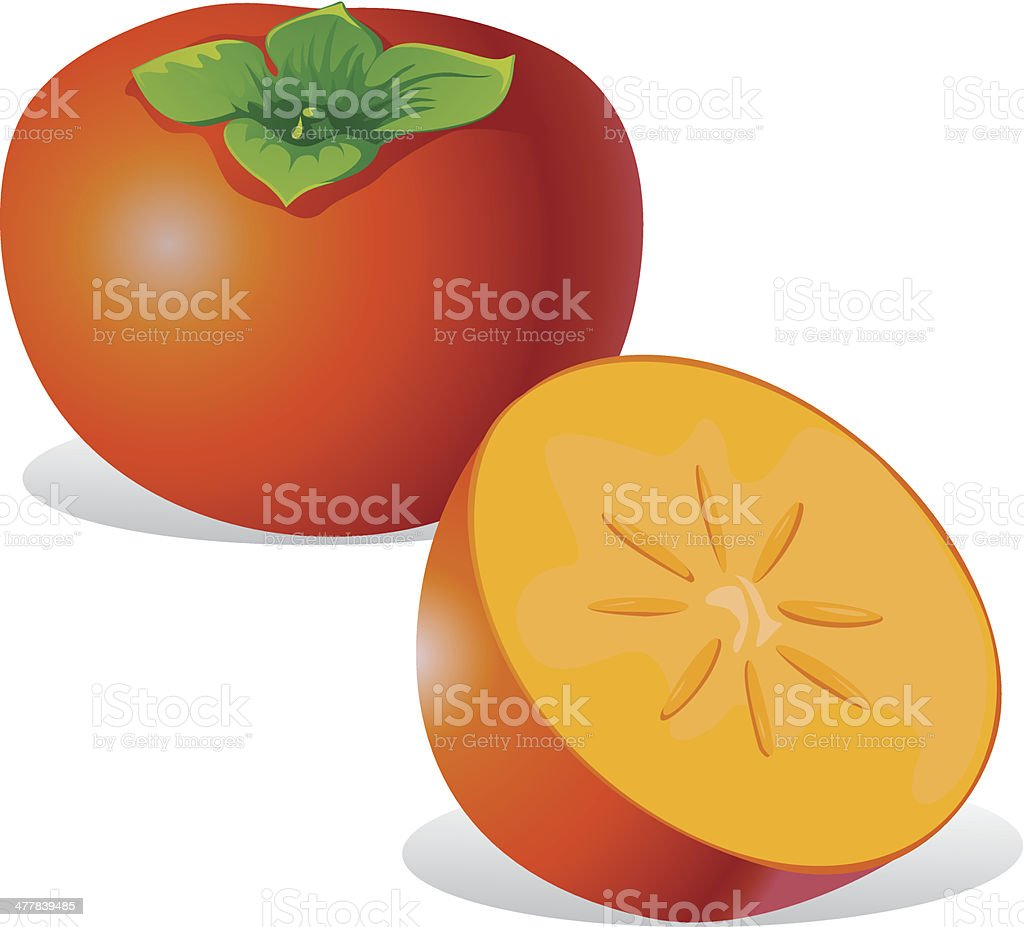 persimmon - vector illustration royalty-free stock vector art