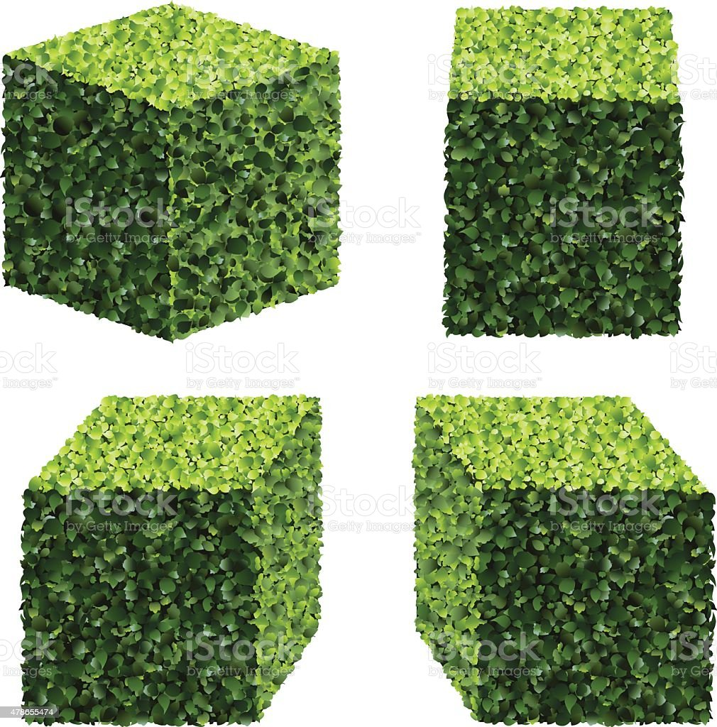 Perspective Square Bushes. Vector bushes. vector art illustration