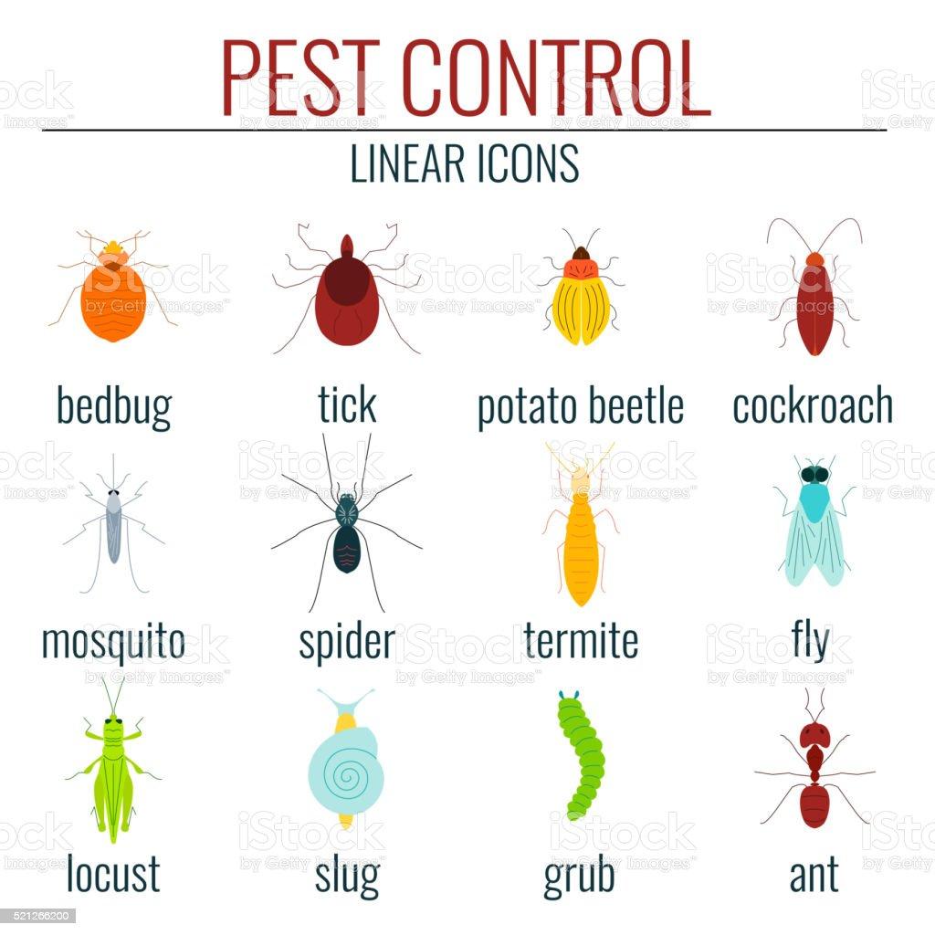 Pest control colored set vector art illustration