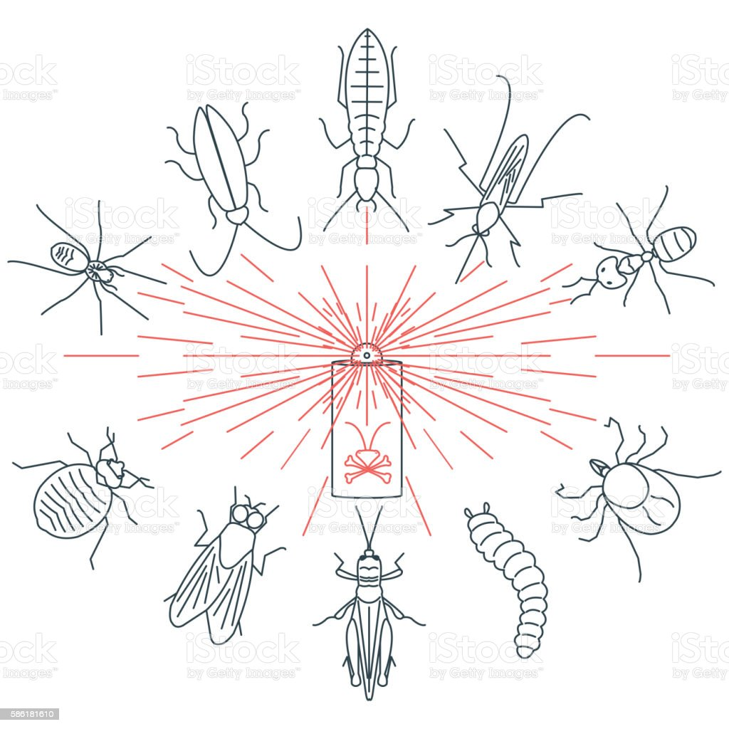 Pest control concept vector art illustration