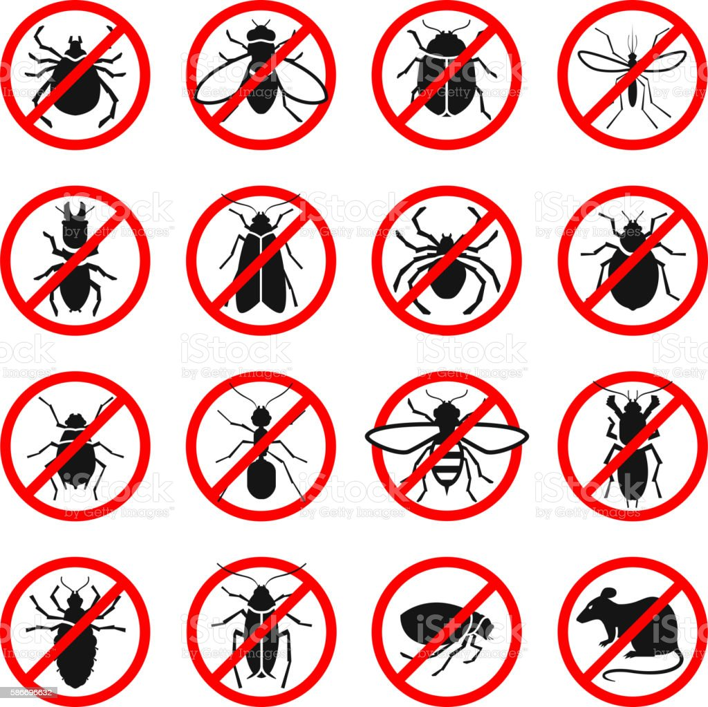 Pest control. Harmful insects and rodents set icons. Vector illustration vector art illustration