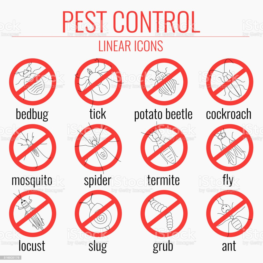 Pest control set-no insects signs vector art illustration