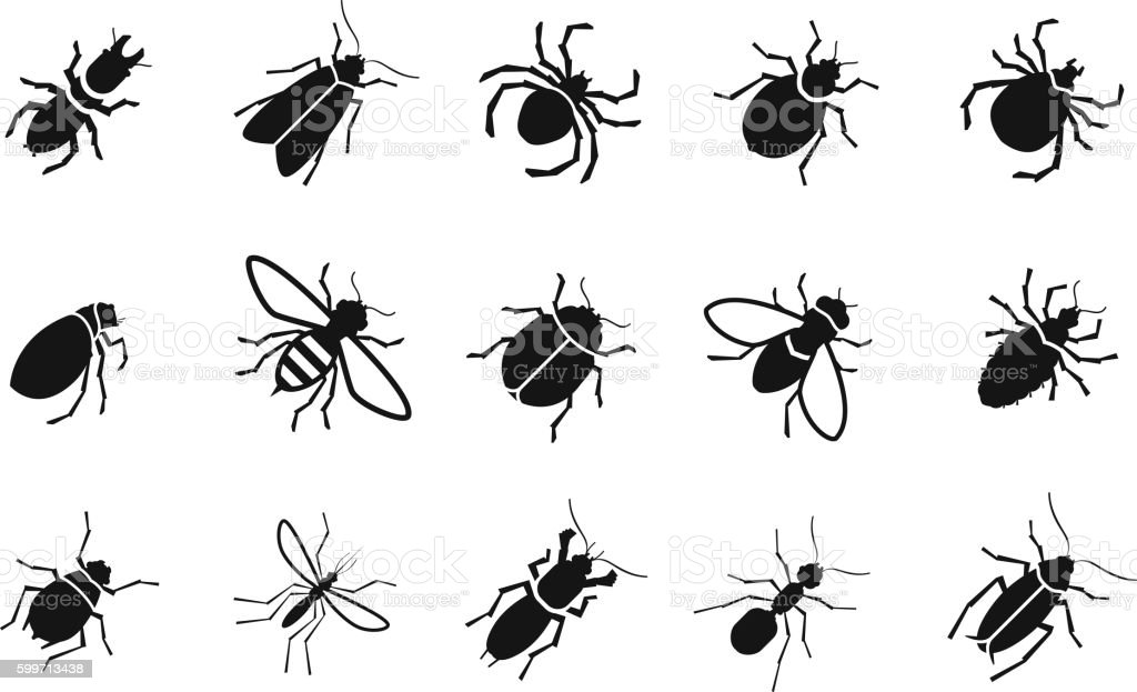 Pests and various insects set vector icons vector art illustration