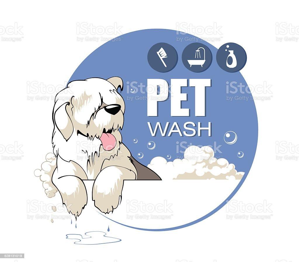 Pet  Wash vector art illustration