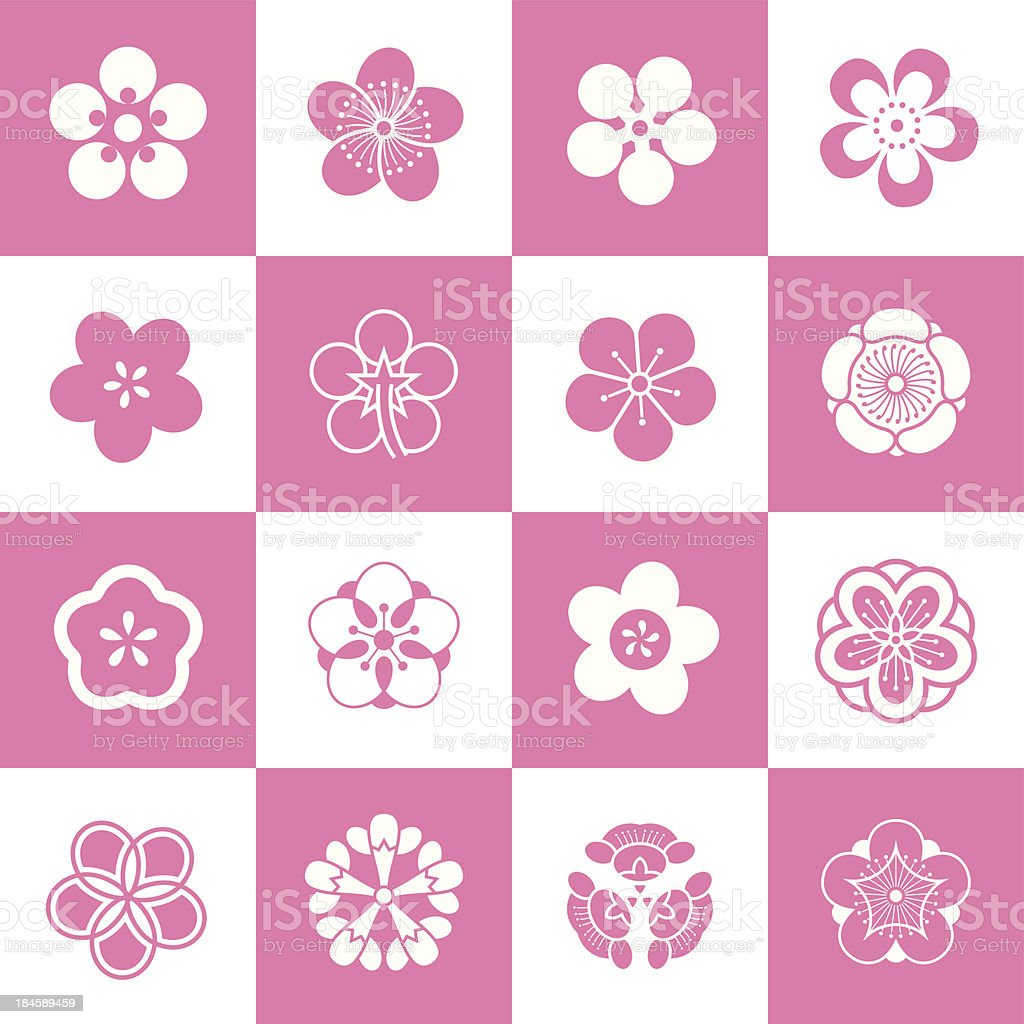 Petal patterns of plum blossom vector art illustration