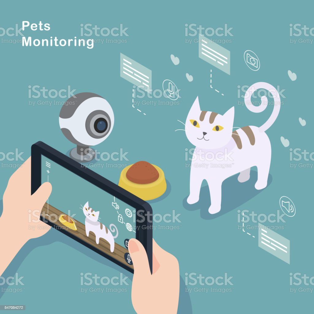 Pets monitoring concept vector art illustration