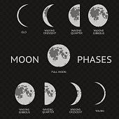 Phases of moon. Whole Astronomy Cycle. Vector