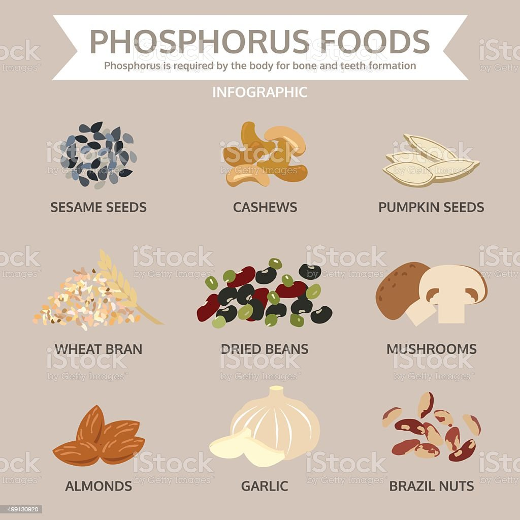 phosphorus foods, food info graphic, vector vector art illustration