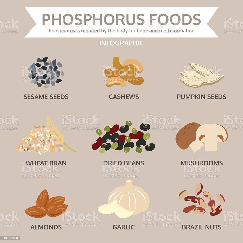 phosphorus foods, food info graphic, vector vector art illustration