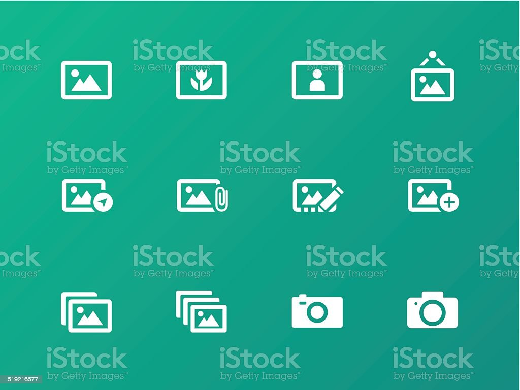 Photographs and Camera icons on green background. vector art illustration