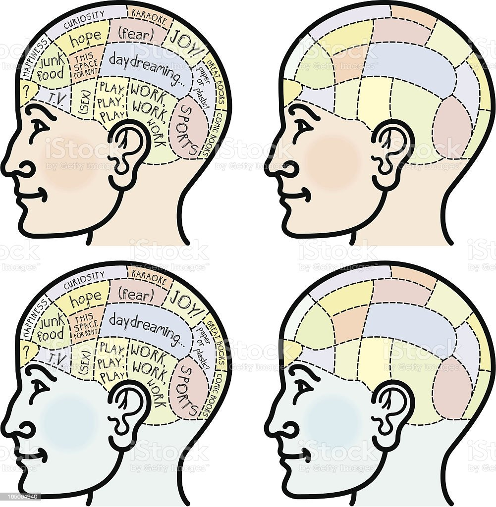 Phrenology head royalty-free stock vector art