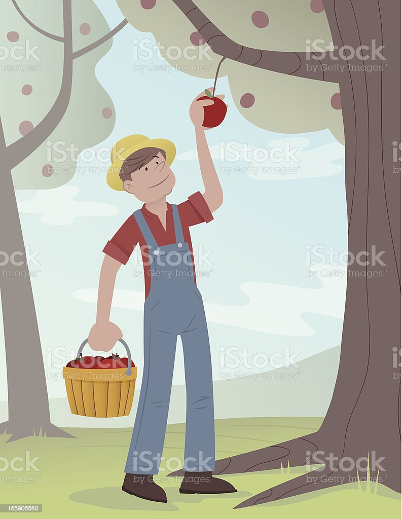 Picking Apples vector art illustration