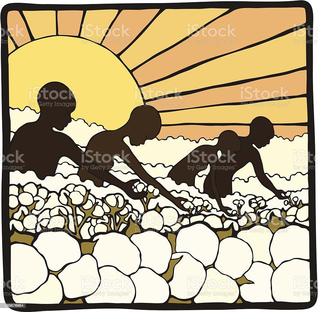 Picking Cotton vector art illustration