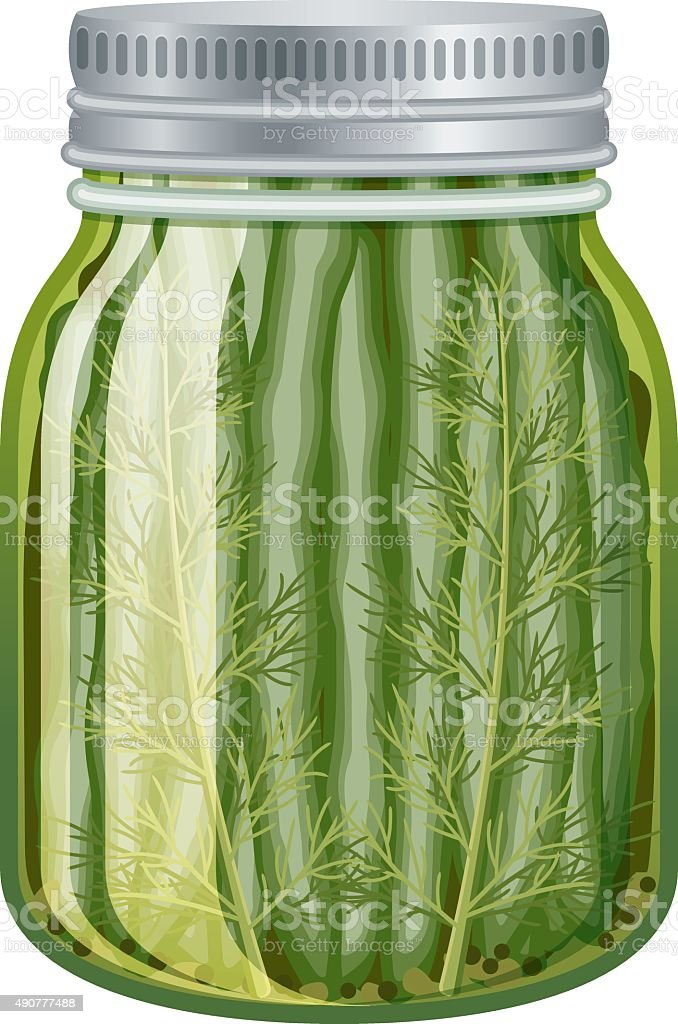 Pickled green beans in glass jar isolated on white vector art illustration