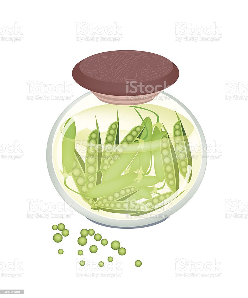 Pickled Sweet Green Pea in A Jar vector art illustration