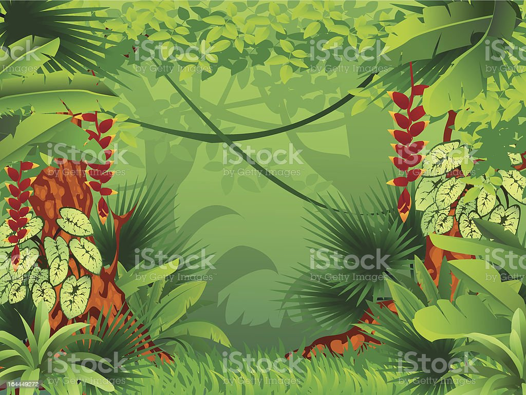Picture of an exotic tropical forest vector art illustration