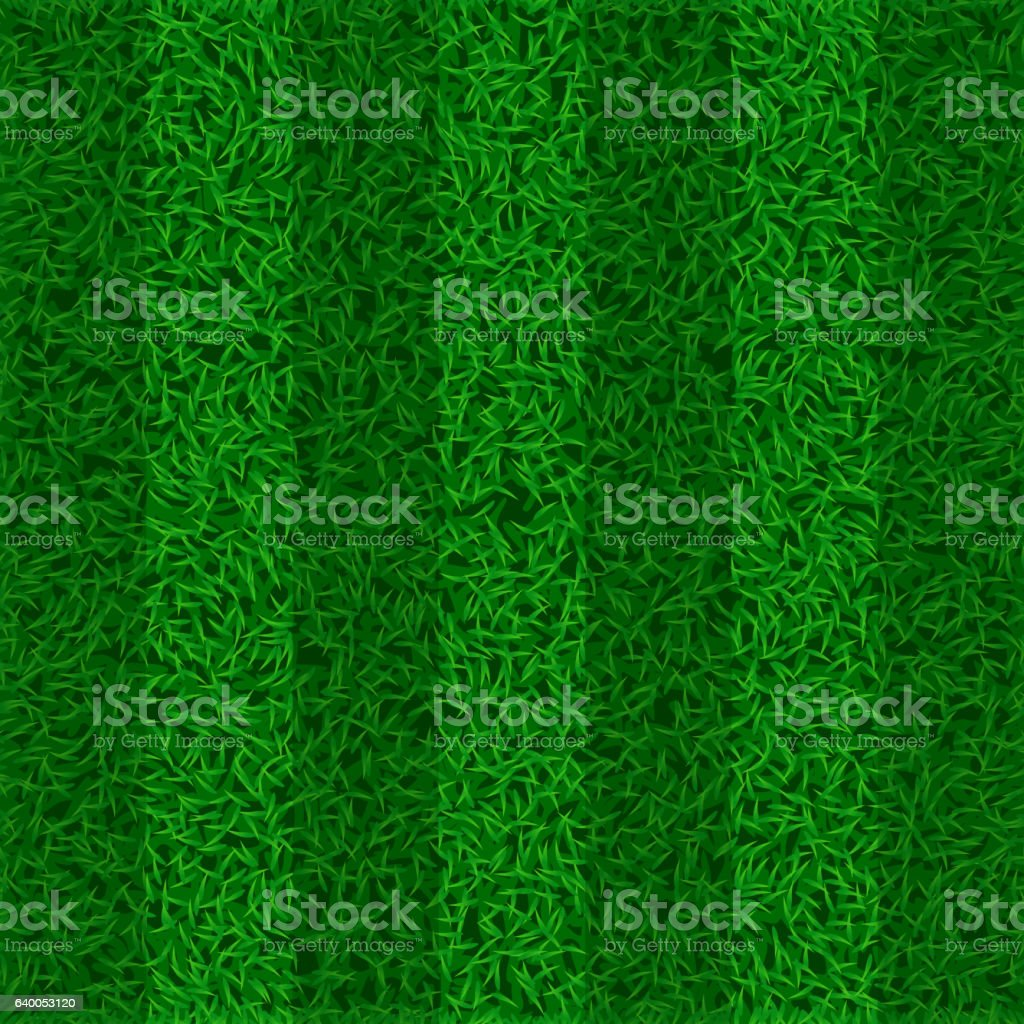 picture of grass field vector art illustration