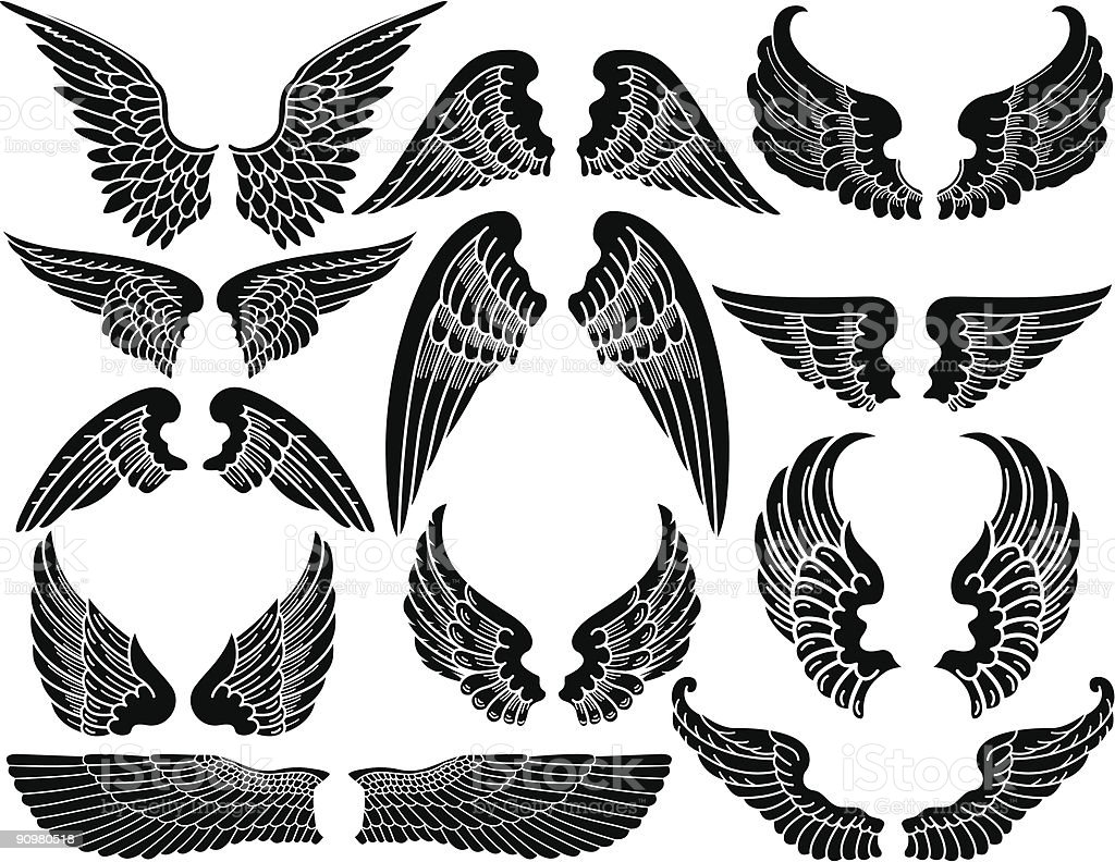 A picture of twelve sets of angel wings  vector art illustration