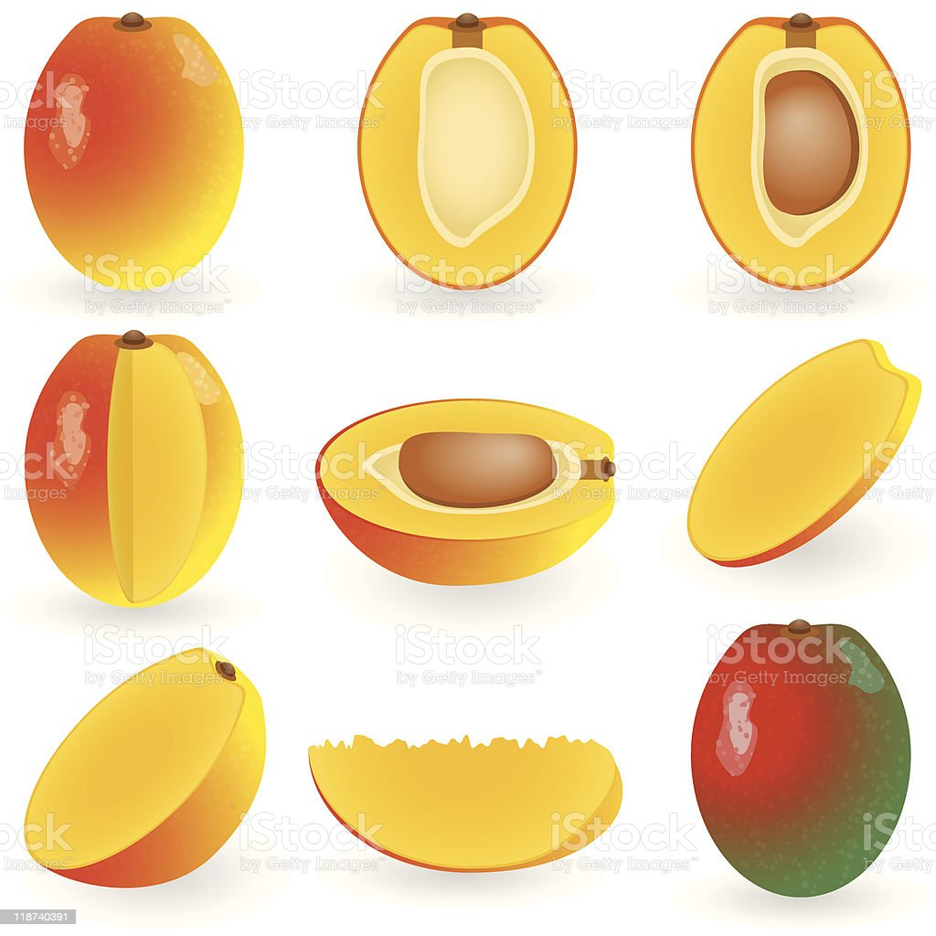Pictures of mangoes in various stages of preparation vector art illustration