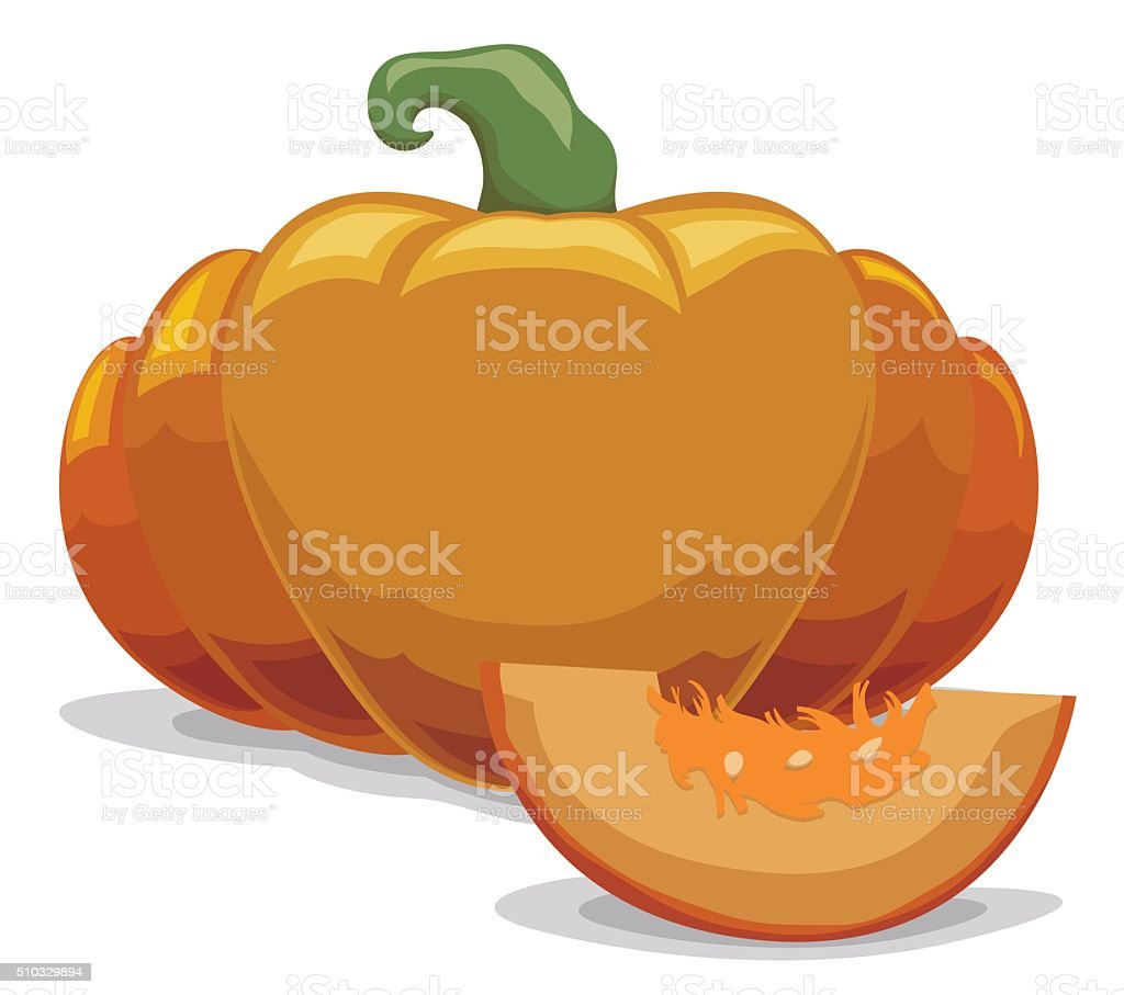 Piece of a Fresh Pumpkin Sliced in Cartoon Style vector art illustration