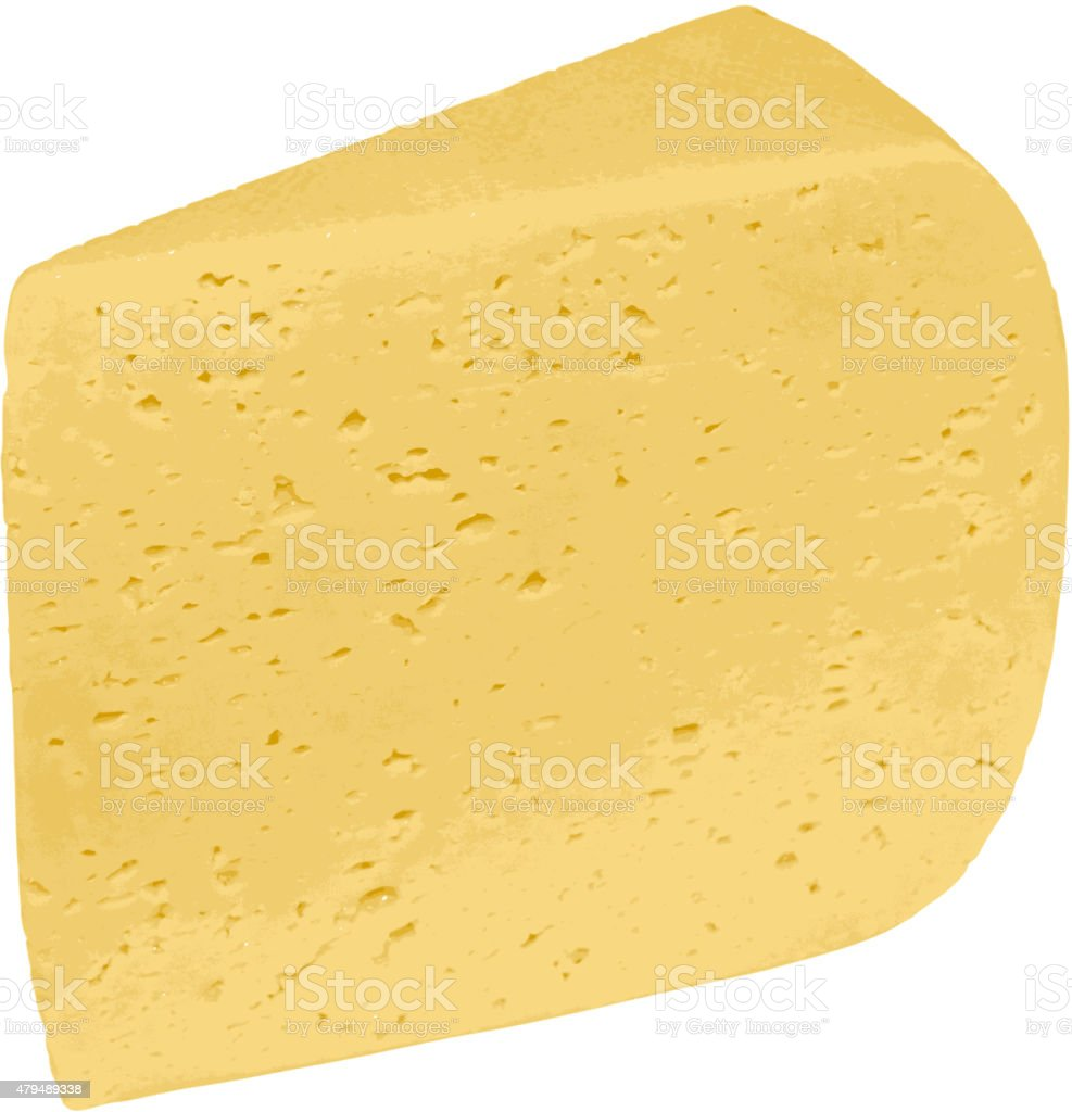 Piece of cheese isolated on a white background. vector art illustration