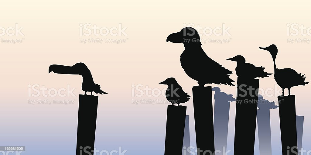 Pier Birds royalty-free stock vector art