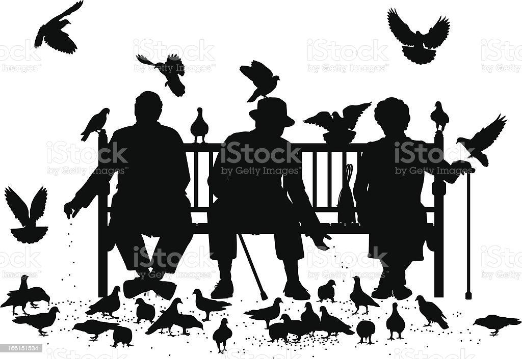 Pigeon feeders vector art illustration