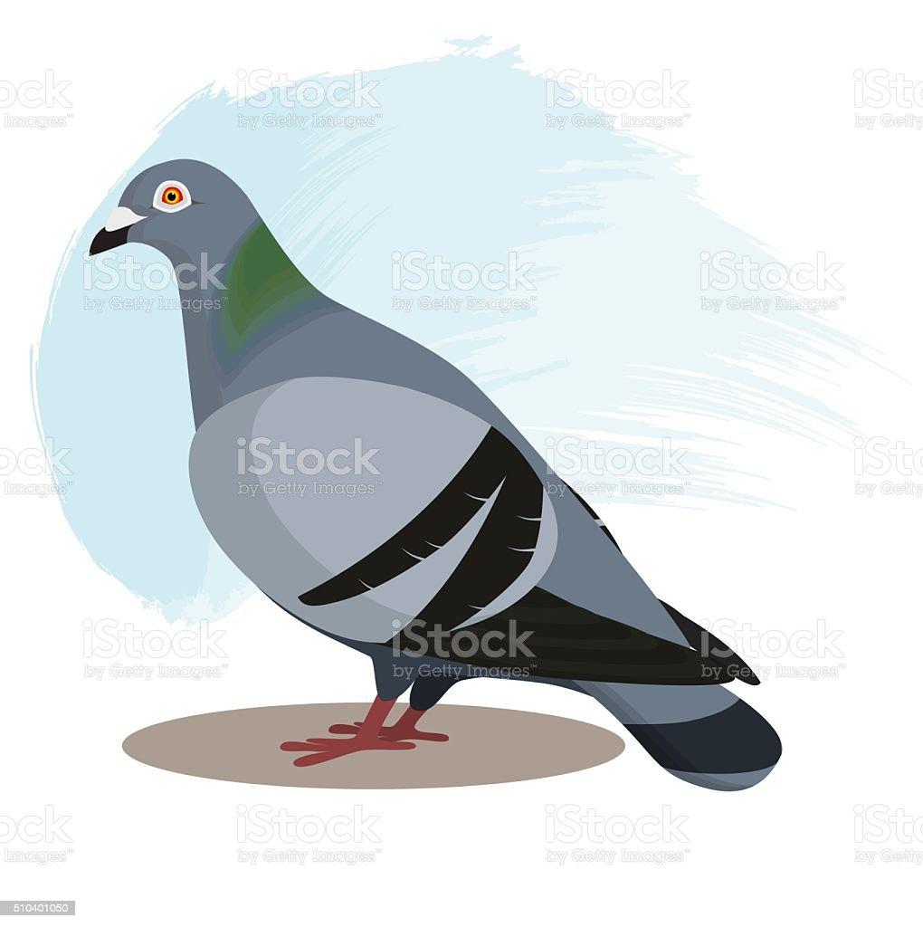 Pigeon with blue background, vector illustration vector art illustration
