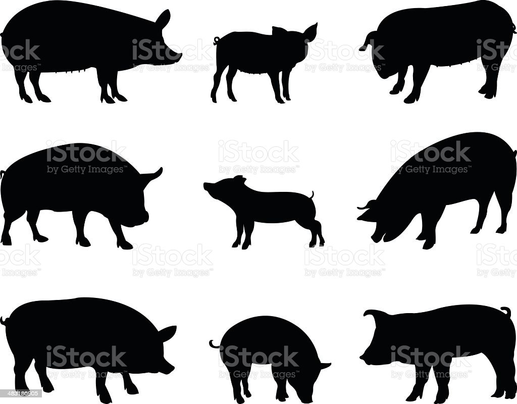 pigs silhouette royalty-free stock vector art