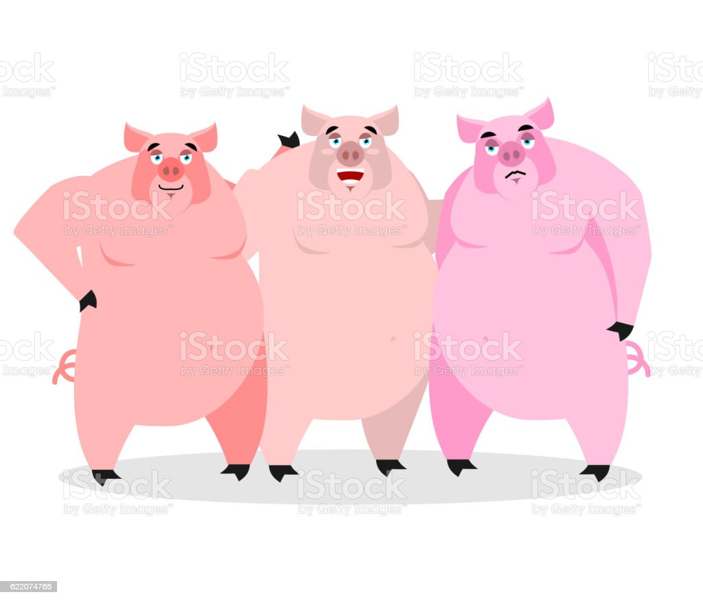 3 pigs. Three piglets. Funny farm animals. Good character vector art illustration